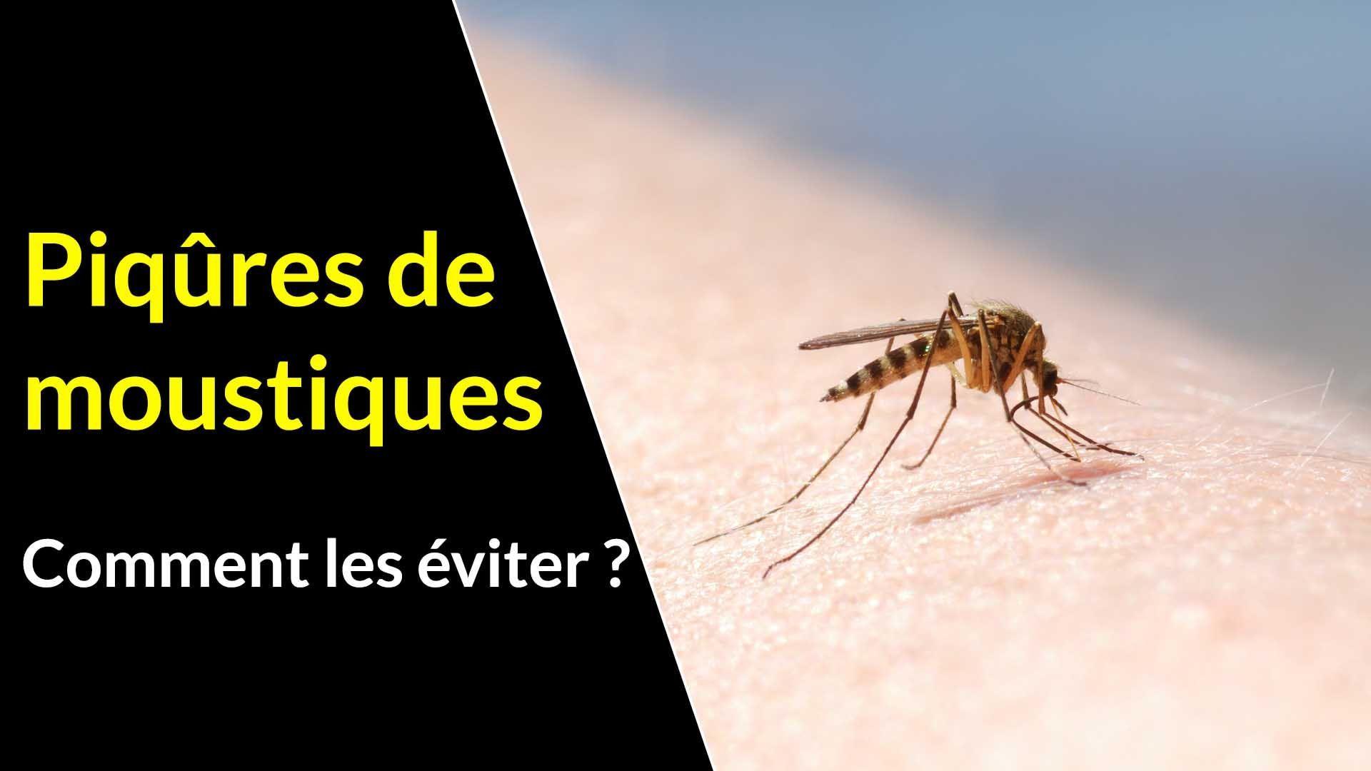 6 conseils pour se protéger des piqûres de moustiques
