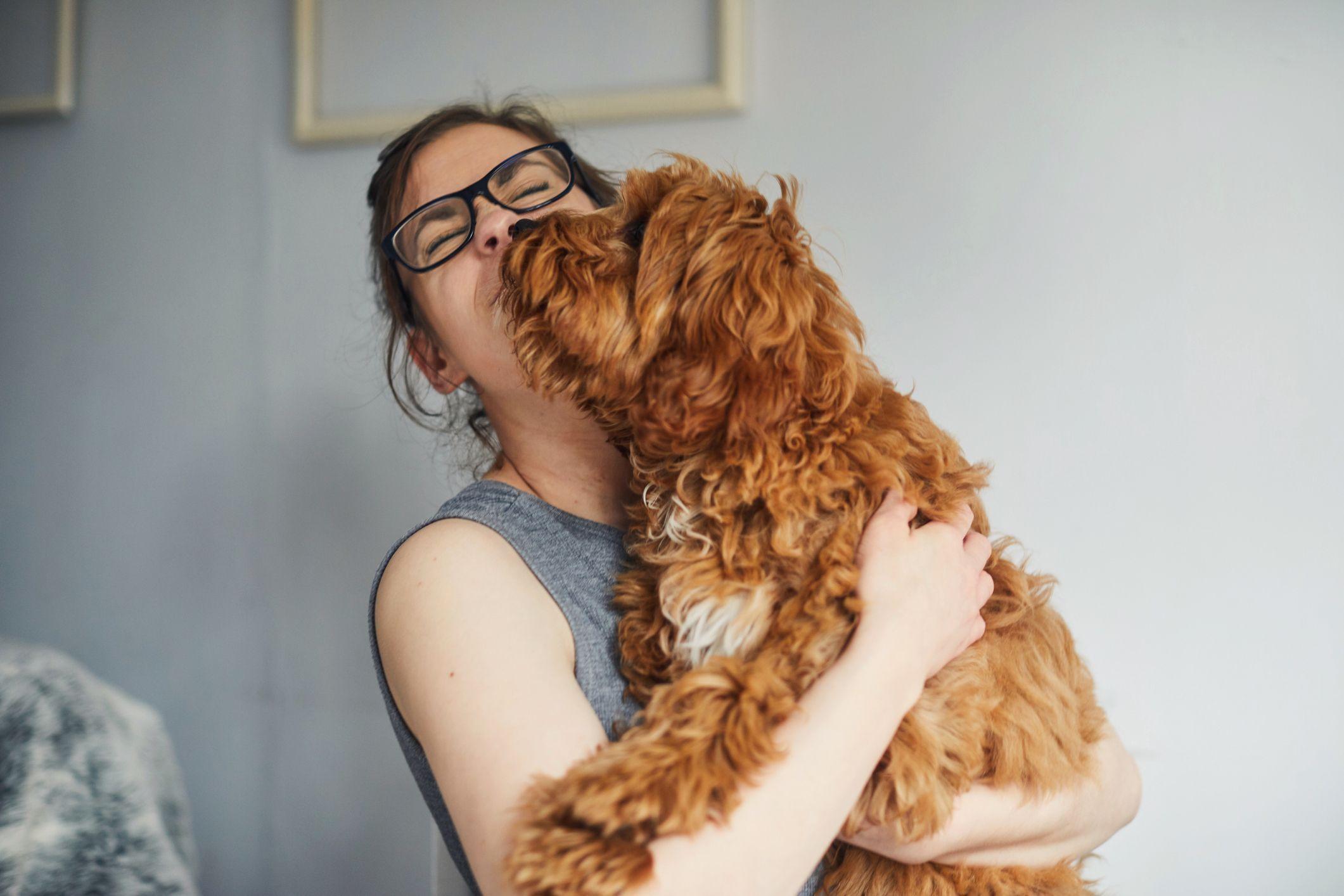 Les propriétaires de chien l'embrassent plus que leurs partenaires