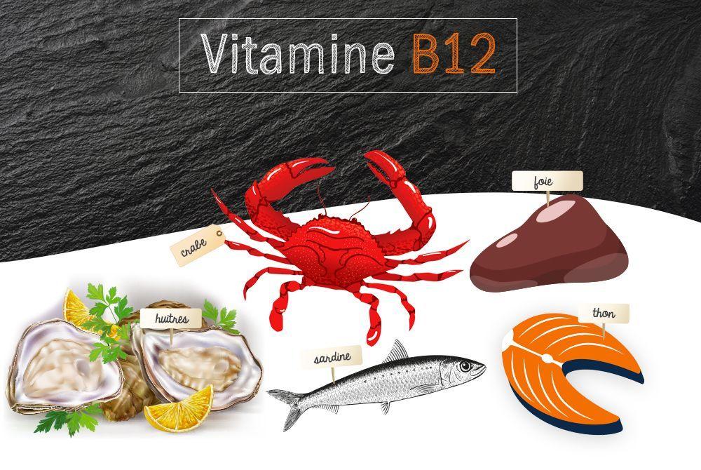 vitamine b12 ou cobalamine r le et sources alimentaires. Black Bedroom Furniture Sets. Home Design Ideas