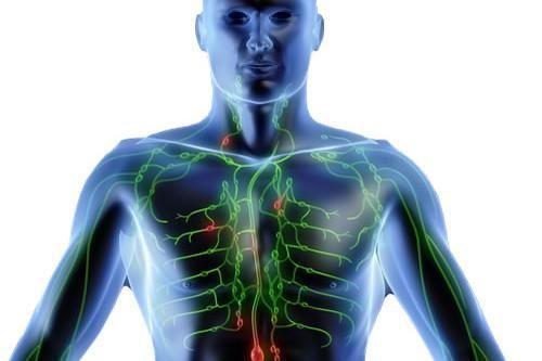Lymphome : Un cancer du système lymphatique