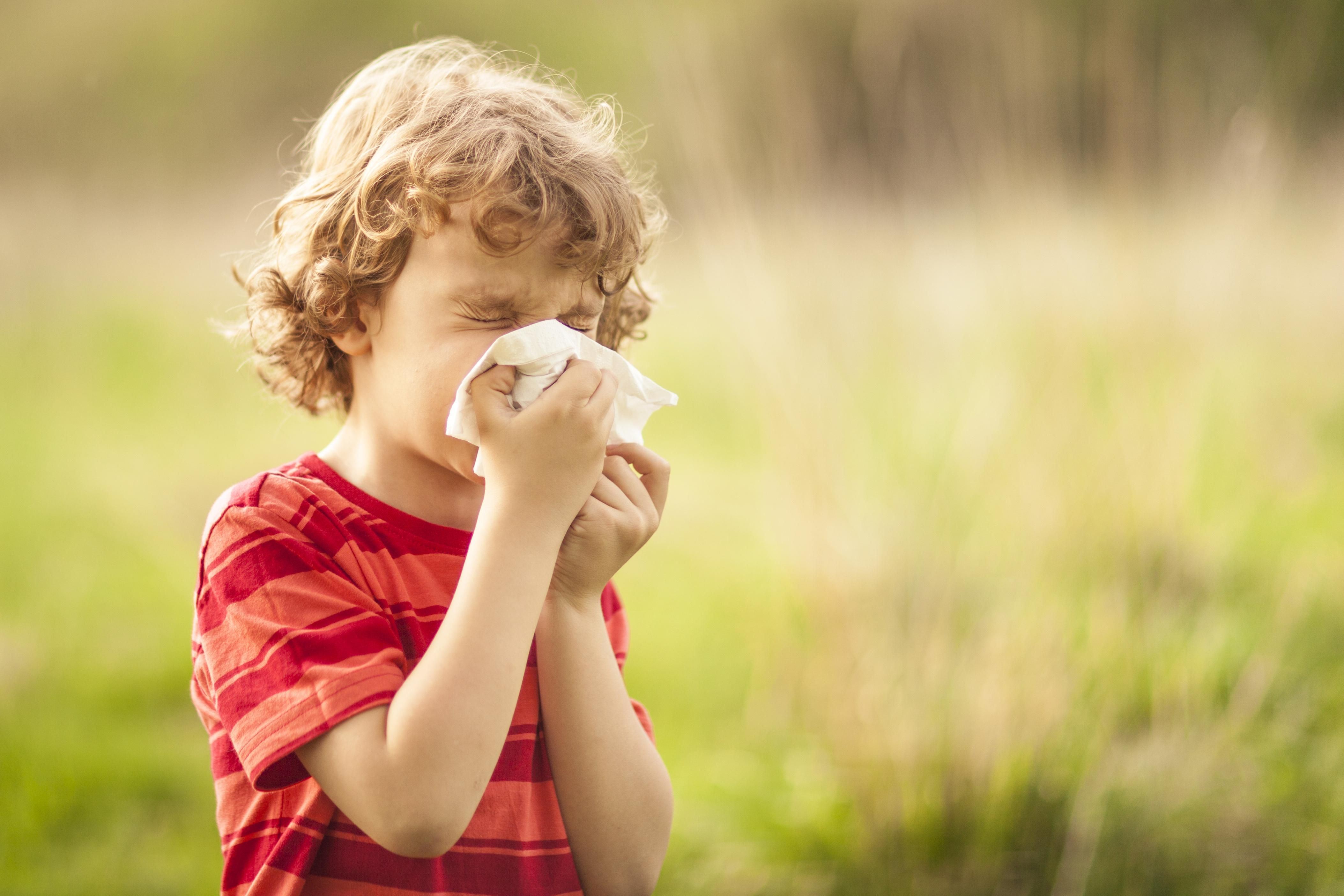 homeopathie pour allergie