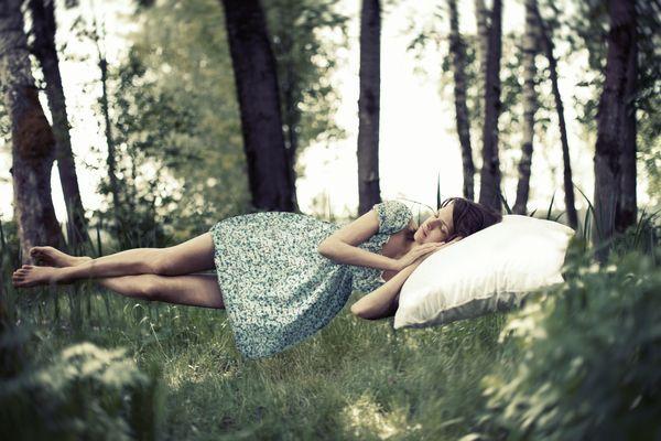 souvenir-rêve corps de l'article