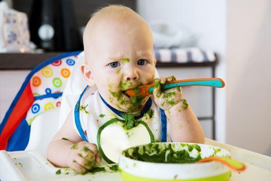 alimentation-bebe-huit-mois-530
