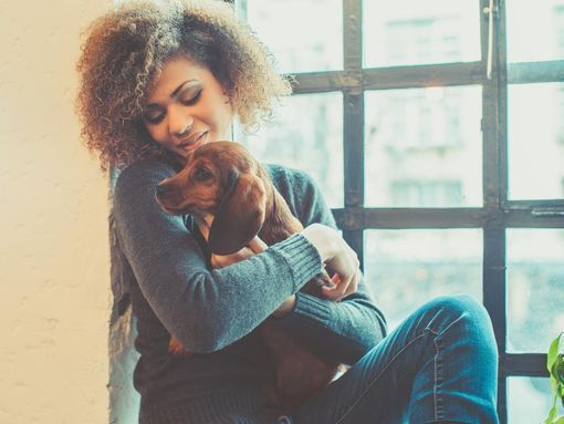 depression-animal-zootherapie-wd-510
