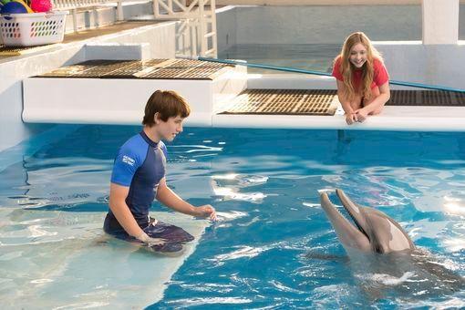 Dolphin Tale 2 - rêver de dauphin article