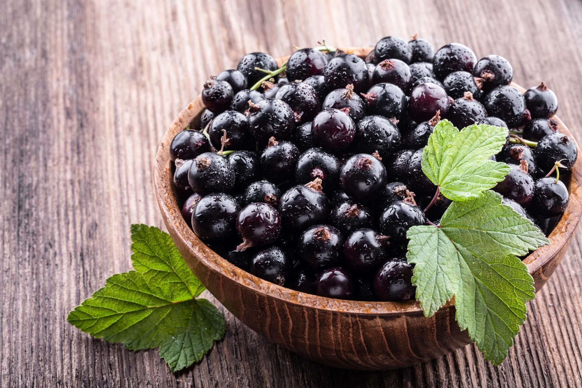 Blackcurrant (fruit): health benefits, nutritional benefits, ideas ...
