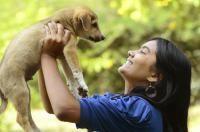 age adoption chien
