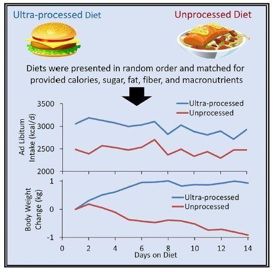 aliments transformés maigrir