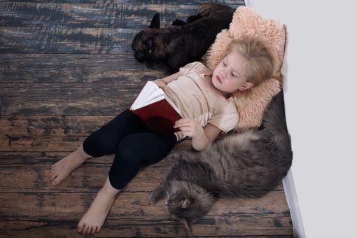 Allergies aux animaux chez l'enfant