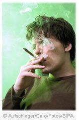 Cannabis consultations
