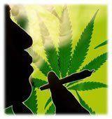 Cannabis prévention drogues