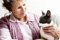 chat centenaire