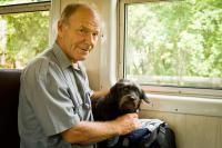 chien dans le train