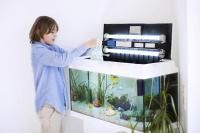 choisir son aquarium