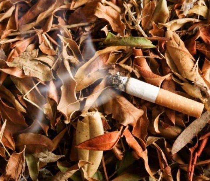 cigarette feu de forêt
