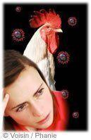 Grippe aviaire virus