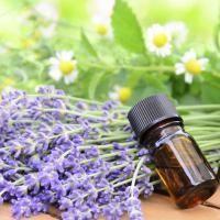 huiles essentielles antiseptiques antivirales
