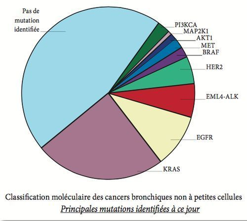 Les principales mutations du CBNPC