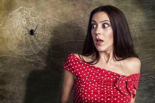 peur araignée