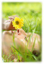 pollens-allergie-alerte