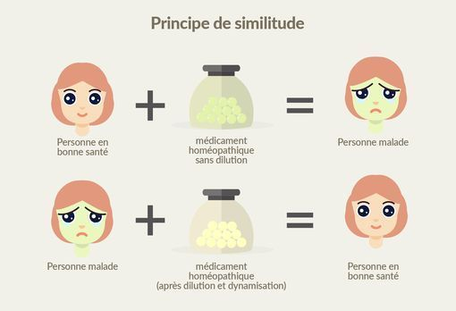 principe de similitude