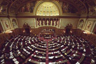 senat-3.jpg