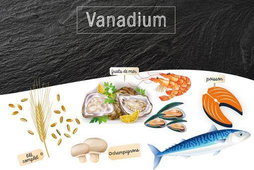 Vanadium - Rôles dans l'organisme, besoins et sources