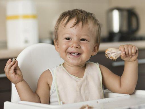 viande-bebe-alimentation-wd-510
