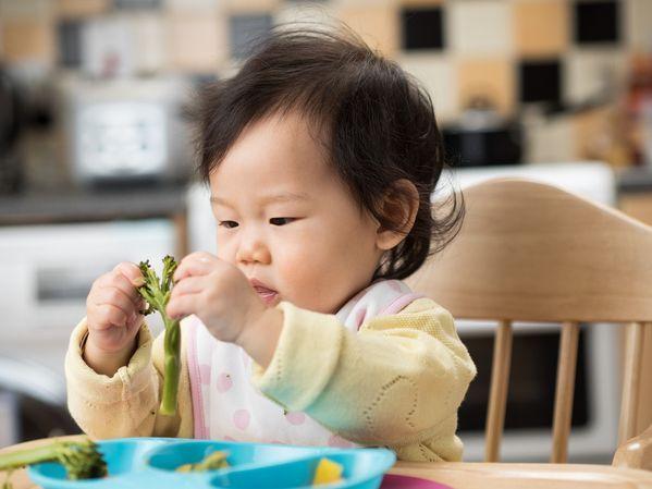 diversification-alimentaire-menee-par-l-enfant-redim