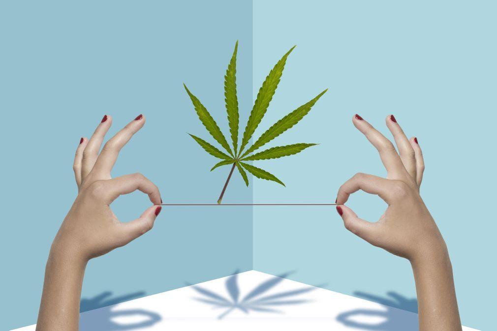 10 produits de beauté à base de cannabis à tester