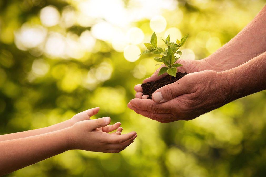 10 gestes pour sauver la planète