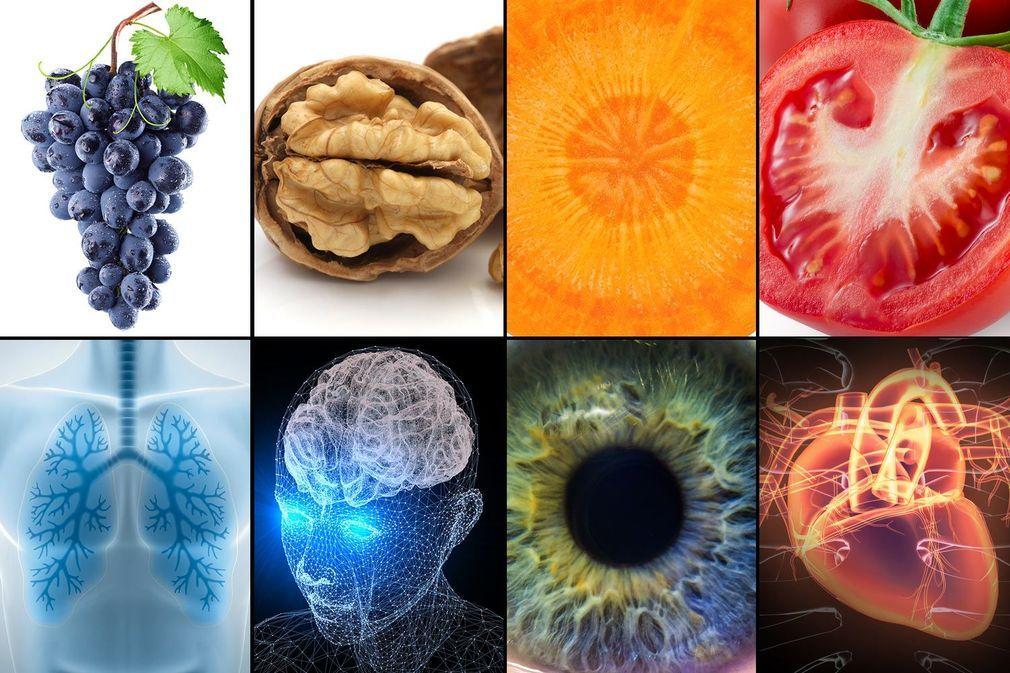 Les aliments qui ressemblent aux organes qu'ils soignent