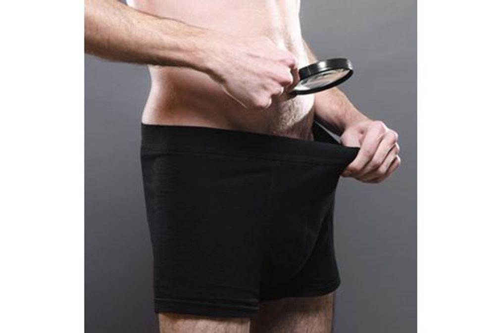 Ce que vous ne saviez pas sur le pénis