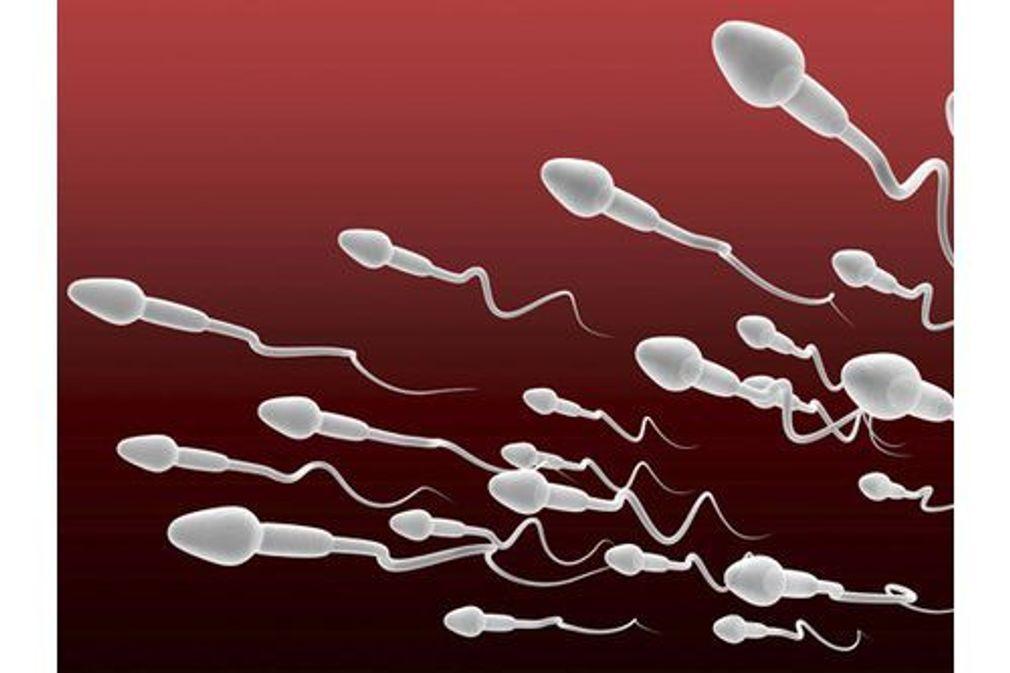 Le sperme en 10 questions