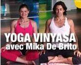 Yoga Vinyasa VIP