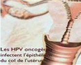 Vaccin et frottis pour une meilleure protection