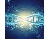 De l'ADN à la thérapie génique