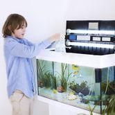 Bien choisir son aquarium