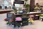 Lush lance un flowers pop up