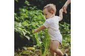 Le jardin : gare aux accidents domestiques !