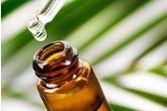 Comment utiliser l'huile essentielle de d'arbre à thé (tea tree) ?