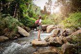Passer dix minutes dans un environnement naturel abaisserait le stress