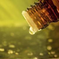 huile-essentielle-de-copahu_medium
