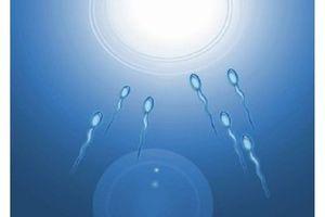 FIV : 65 % des couples auraient un bébé après 6 tentatives