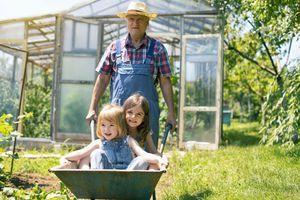 Le Grand-Mercredi ou la Journée Nationale des Grands-Parents et des Petits-Enfants
