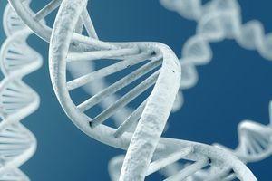 Cancer du sein métastatique : analyser l'ensemble du génome pour un traitement sur-mesure
