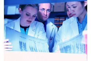 Cancer : la radio-immunothérapie alpha en cours de développement