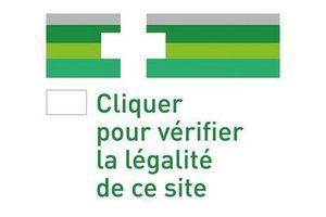 L'UE se dote d'un logo pour sécuriser les achats de médicaments en ligne