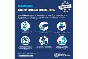 La résistance aux médicaments antimicrobiens en hausse en Europe