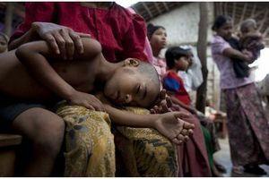 Le vaccin anti-paludisme offre une protection modeste